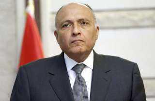 مصر تسجل في خطاب لمجلس الأمن اعتراضها على إعلان إثيوبيا نيتها ملء سد النهضة