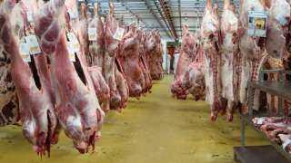 الزراعة: اللحوم الحمراء متوفرة.. وسعر الكيلو يبدأ من 60 جنيها