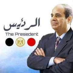 عماد الملاح يكتب ....الرئيس ورؤية مصر 2030