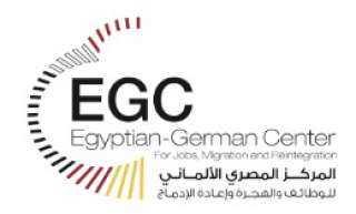 ورشة عمل للشباب المصريين الدارسين بالخارج بالمركز المصري الألماني للوظائف والهجرة وإعادة الإدماج